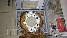 ДПУ-10-2 10000кг