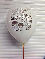 """Шар латексный 12"""" """"Здравствуй, осень"""", цвета"""