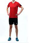 Форма волейбольная SS TEE INDOOR 2, фото 3