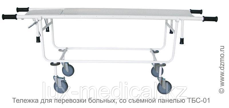 ТБС-01 Тележка для перевозки больных, со съемной панелью