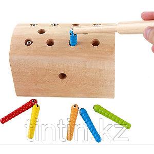 Деревянная игрушка - Сундук с червяками (на магнитах), DN-516