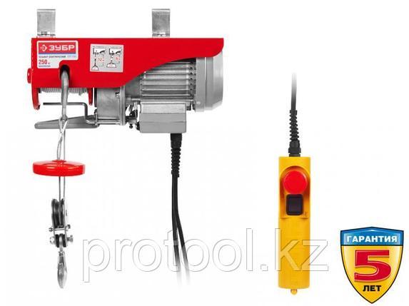 Тельфер, ЗУБР ЗЭТ-250, 250/125 кг, 500 Вт, фото 2