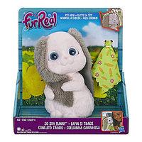 Hasbro Furreal Friends C0733 Пушистый друг Забавный кролик