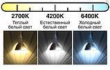 Лампа галогенная Osram HLX 64642 24V 150W, фото 5