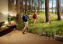 Скандинавская ходьба - ходить или не ходить?