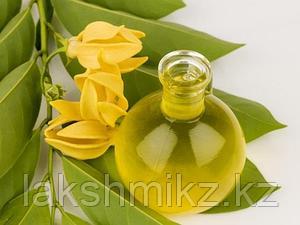 Эфирное масло Иланг-Иланг Song of India (Ylang Ylang Oil)