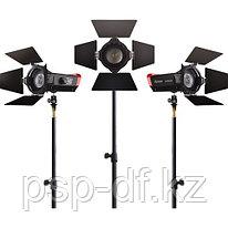 Комплект светодиодных осветителей Aputure LS-mini20 3-Light Flight Kit with Stands (ddc) (студийный вариант
