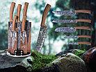 Набор ножей Berlinger Haus Forest Line 6 пр. (BH-2160), фото 4