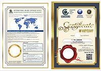 Международная регистрация авторских прав в Казахстане