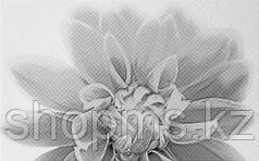 Керамическая плитка Шахтинская Камелия чёрный декор 03 (250х400)