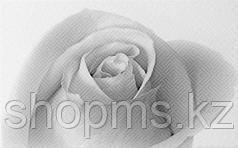 Керамическая плитка Шахтинская Камелия чёрный декор 01 (250х400)