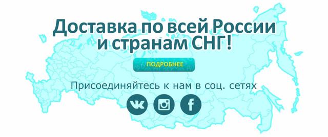 Доставка по всей России и странам СНГ Источник: https://7x.kz/