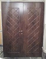 Дверь двухстворчатая экшпон