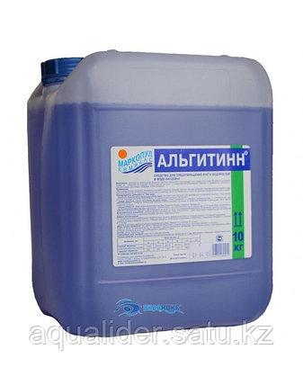 Альгитинн 10 литр, фото 2