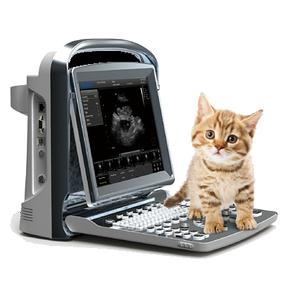 Ветеринарный ультразвуковой аппарат ECO 1 Vet
