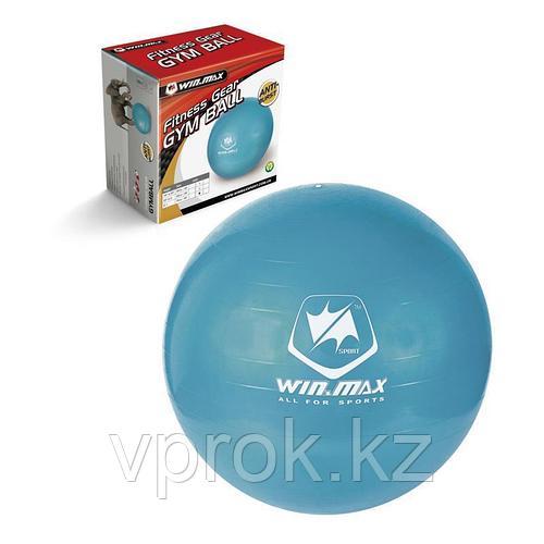 Мяч для фитнеса PROFI 75см WinMax WMF09648