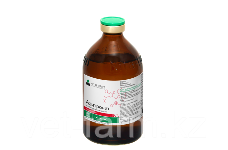 Азитронит 100мл