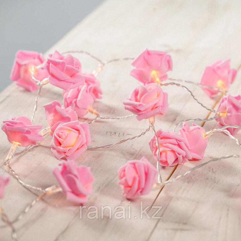"""Гирлянда """"цветные розы """"  (Розовый) НА РОЗЕТКАХ"""