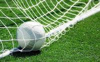 Сетка для футбольных ворот (7,32 х 2,44 м)