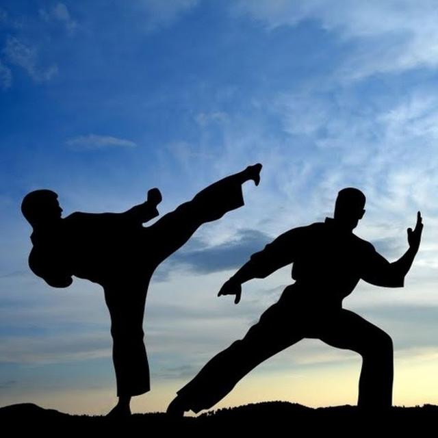 Единоборства и бокс