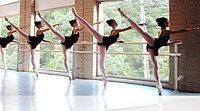 Балетные (хореографические) ст...
