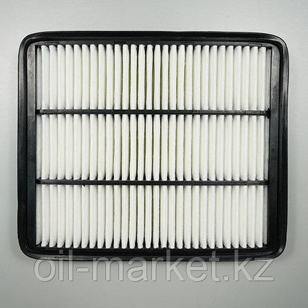 Воздушный фильтр Hyundai Terracan 01-07, фото 2