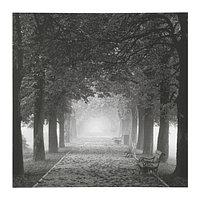 Картина Пьеттерид, Туманная аллея