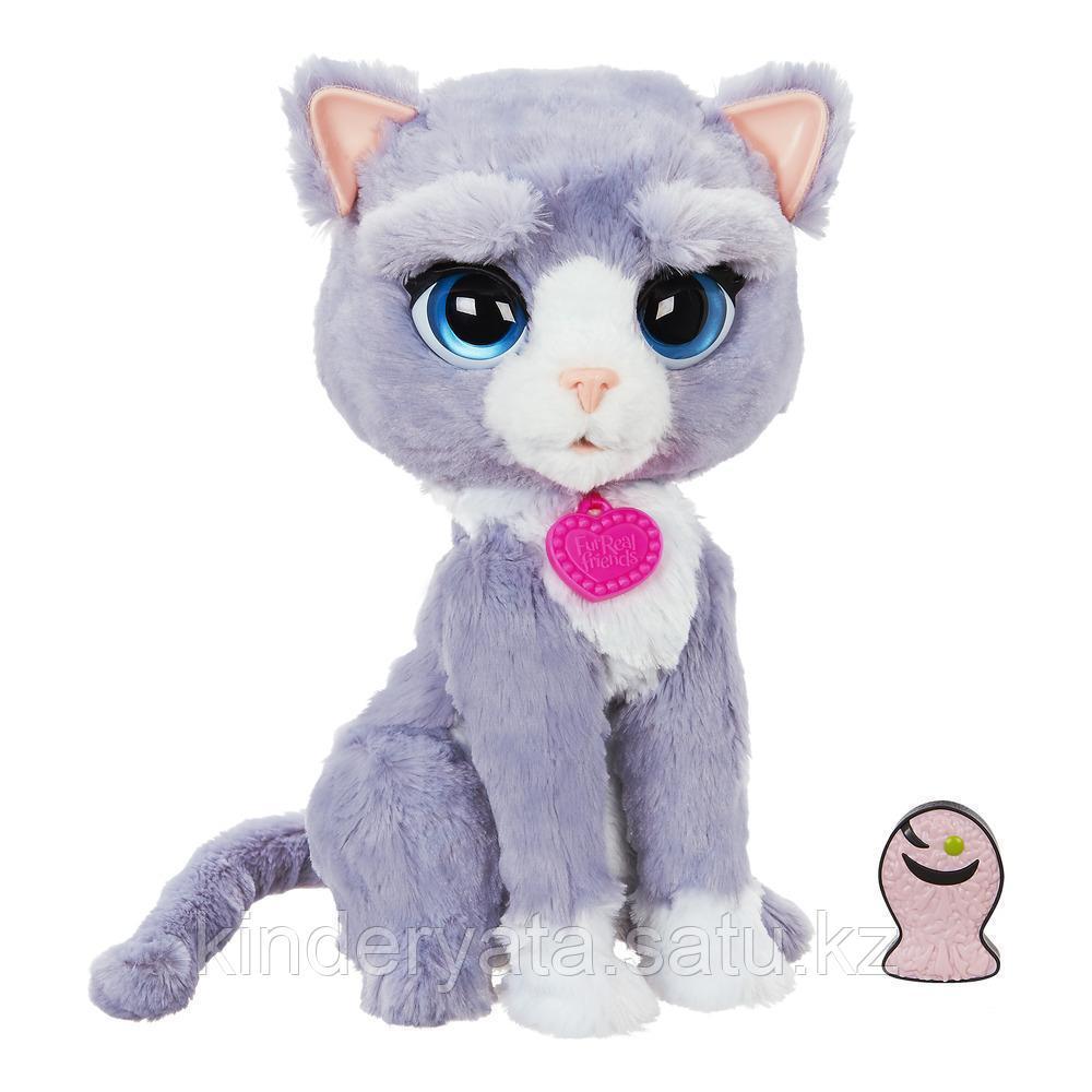 Интерактивный котёнок Бутси (Bootsie) FurReal Friends Hasbro