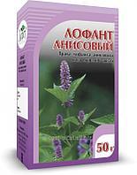 Лофант анисовый, 50 гр