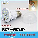 Магическая лампочка Intelligent LED Emergency 12W, фото 3