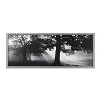 Картина с рамой Бьёркста, Лесная поляна II ИКЕА, IKEA