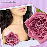 """Брошь из фоамирана своими руками """"Пудровая роза"""""""