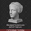 Голова Венеры Милосской  (гипс, 22*27*32 см)