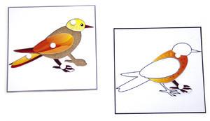 Строение птицы (пазлы) и её контур (ламинированный)