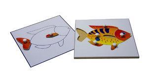 Строение рыбки (пазлы) и её контур (ламинированный)