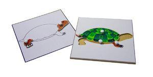 Строение черепахи (пазлы) и её контур (ламинированный)