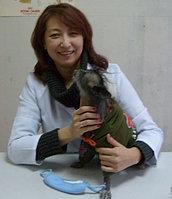 Исахметова Жанна Таримзаевна (стоматолог)