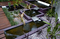 Озеленение террас, фото 1