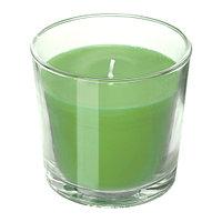 Ароматическая свеча в стакане, Яблоко и груша, зеленый