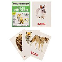 """Обучающие карточки по методике Г.Домана """"Дикие животные"""", фото 1"""