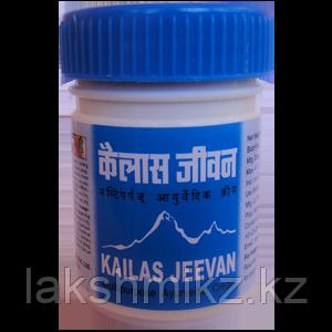 «Кайлаш Дживан» (Kailas Jeevan)Мазь-бальзам-универсальная помощь 30гр
