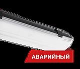 Светильник светодиодный Diora LPO/LSP SE 40, фото 3
