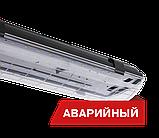 Светильник светодиодный Diora LPO/LSP SE 40, фото 4