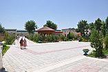 Сарыагаш санаторий Алтынай Люкс, фото 2