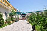 Сарыагаш санаторий Алтынай Люкс, фото 3