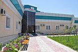 Сарыагаш санаторий Алтынай Люкс, фото 5