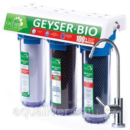 Гейзер  Био 322 (для жесткой воды), фото 2