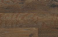 Шотландский дуб Арт D 2982