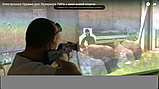 Оружие для Электронного Лазерного ТИРа (в том числе с системой имитации отдачи) , фото 5