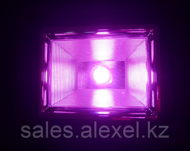 фитопрожектор полного спектра для теплиц
